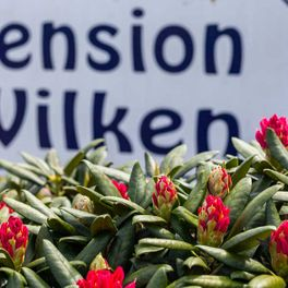 Pension Wilken Bad Zwischenahn
